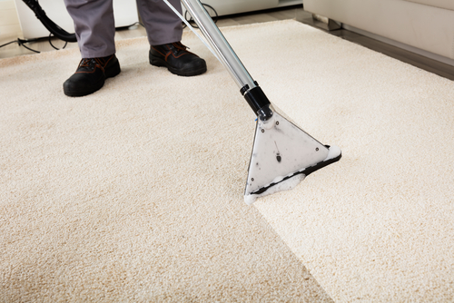 can-carpet-cleaning-reduce-germs-and-viruses
