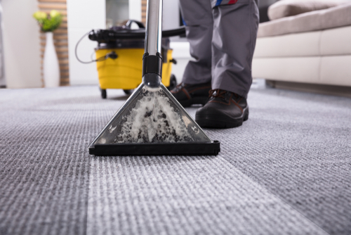 use-of-professional-carpet-cleaning
