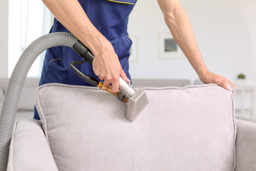 Qualities Of A Professional Carpet Cleaning Company