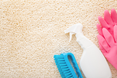 Tips On Cleaning Carpet Efficiently