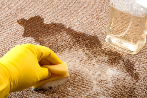 How to Deep Clean Carpet At Home?