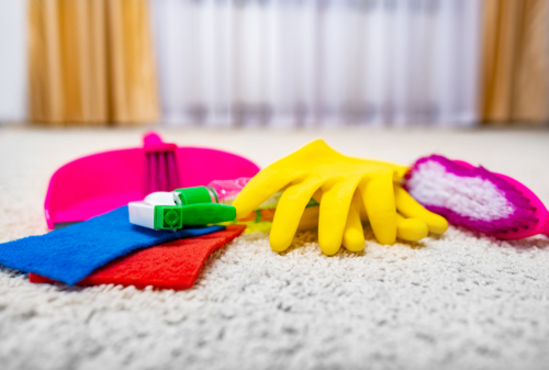 How To Disinfect And Sanitize Carpet Myself?